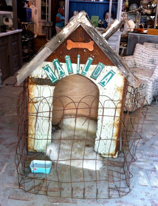 Matilda's Dog House